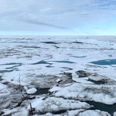 Schwarzer Schleier über dem Eis